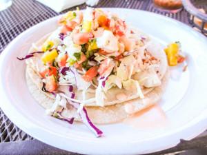 one fish taco at cafe salsa